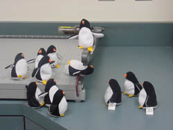 Penguins by a cutting board