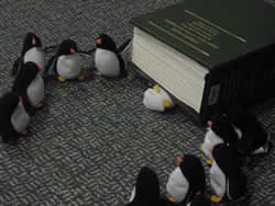 Penguins by a book