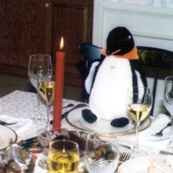 Puron the penguin at Thanksgiving