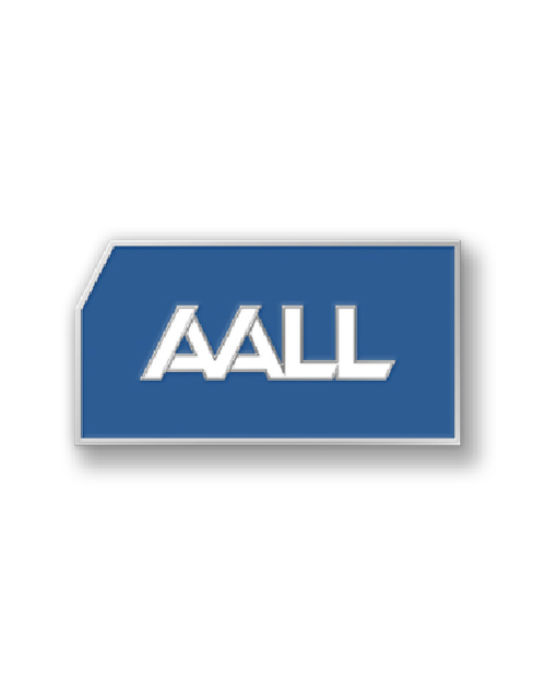 AALL Membership Pin